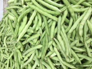 Fresh Green beans at Capitol Market in Charleston WV! The best farmer's market in the state!!